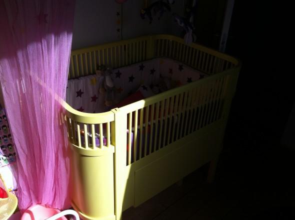 gul Sebra seng